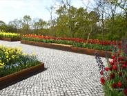 Travertin, Muschelkalk, Garten- und Landschaft, Havelregion