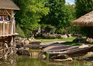 Grottensteine und Felspartien aus Seeberger Sandstein von TRACO
