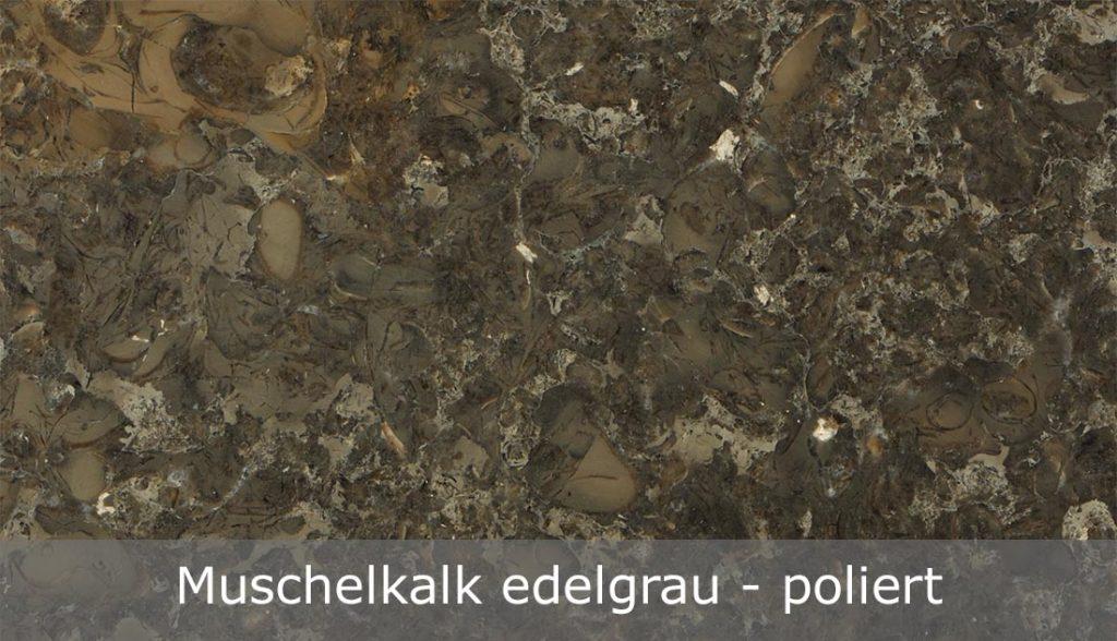 Muschelkalk edelgrau mit polierter Oberfläche