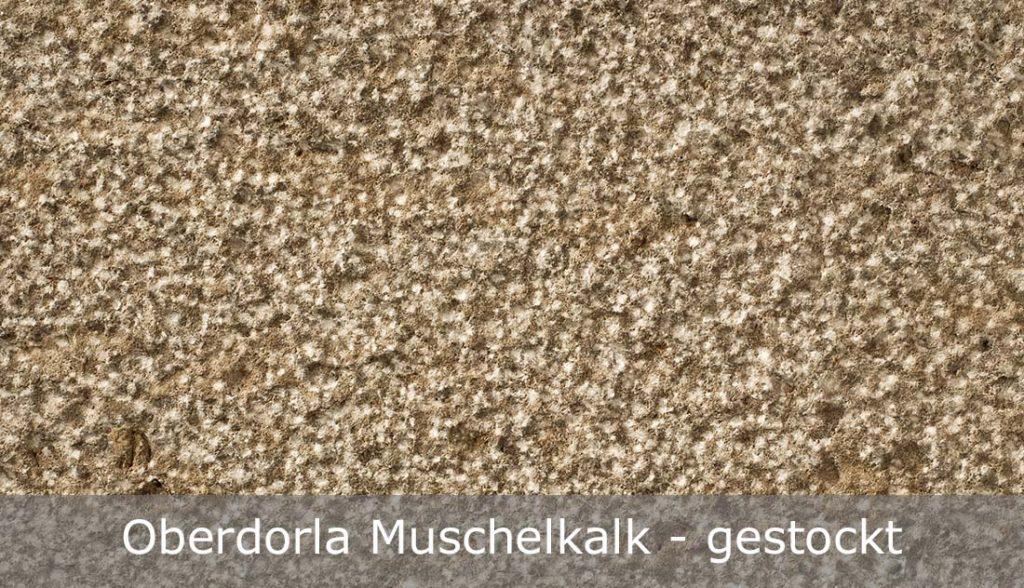 Oberdorla Muschelkalk mit gestockter Oberfläche