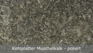 Kohlplatter Muschelkalk mit polierter Oberfläche