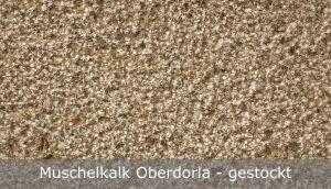 Muschelkalk Oberdorla mit gestockter Oberfläche