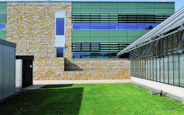 Fassadengestaltung mit verschiedenfarbigen Natursteinen von TRACO