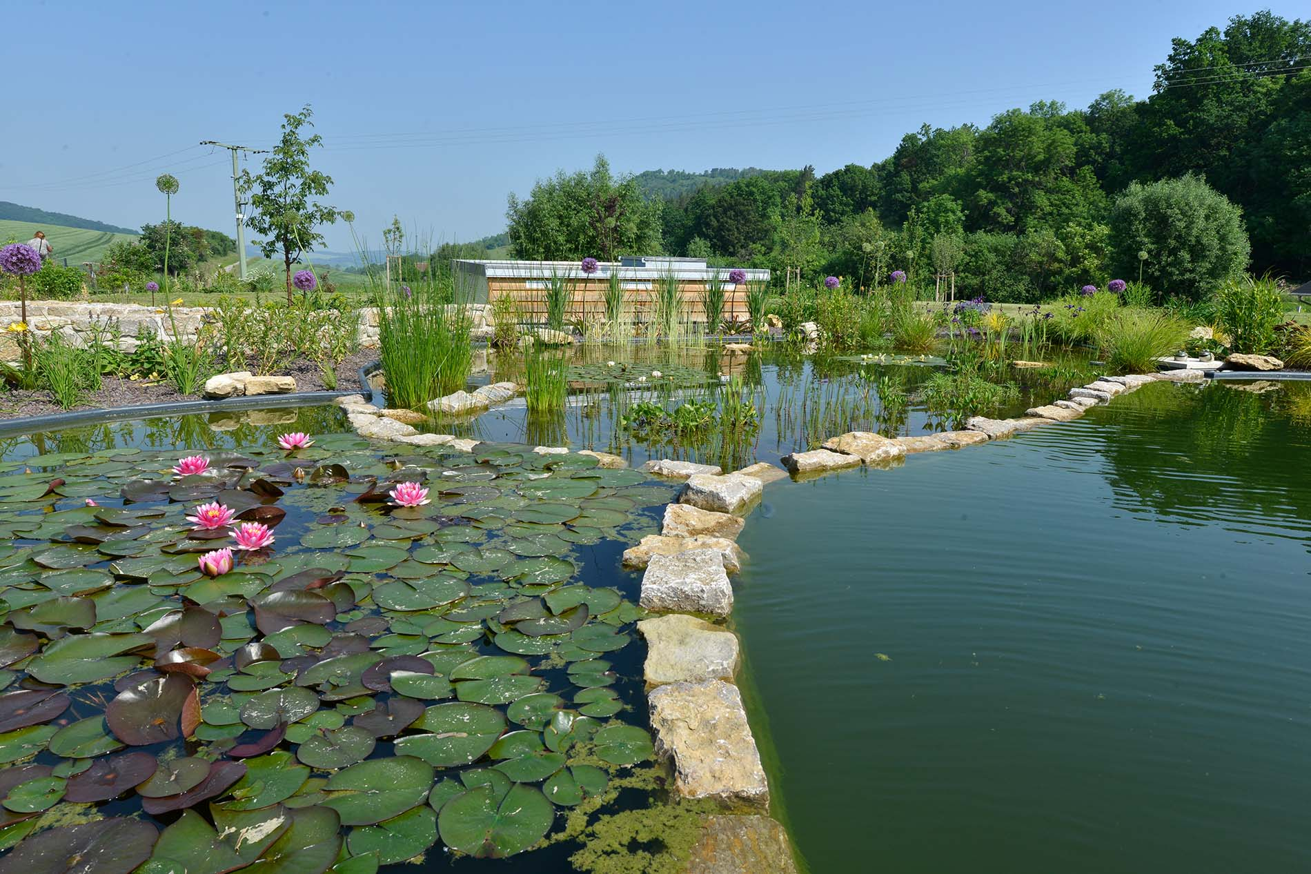naturbelassene Bruchsteine zur Teichgestaltung